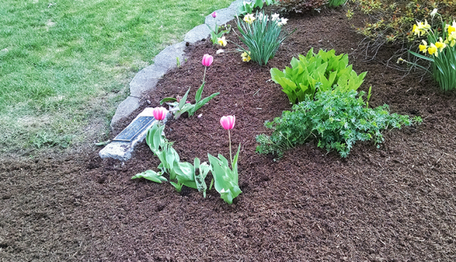 Top Cut Lawn Care Mulch and Rock Beds