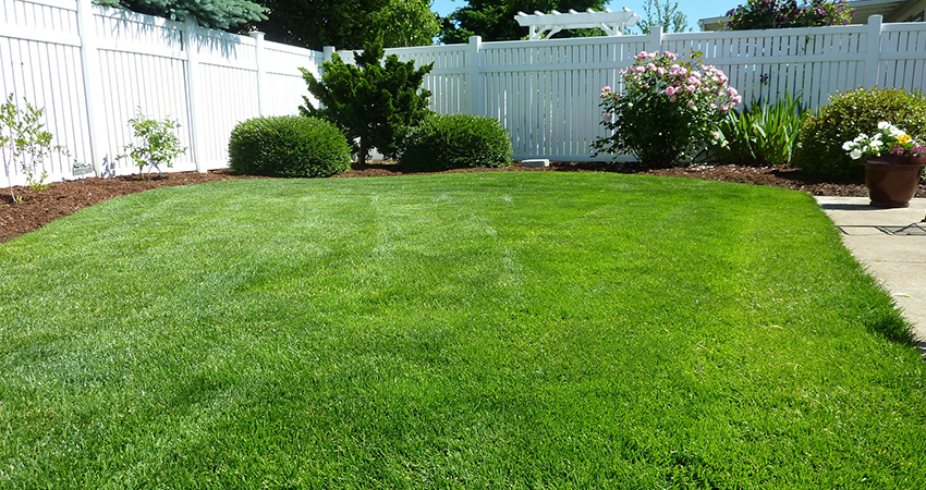 Top Cut Lawn Care Property Management