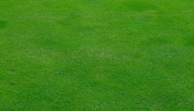 Top Cut Lawn Care Aeration